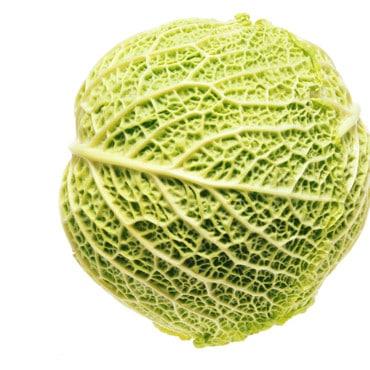 Chou frisé bio issue de potager mad ein Alsace