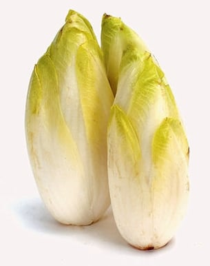Endive bio salade de proximité de Strasbourg