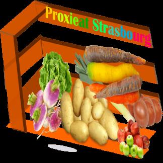 Le panier de fruits et légumes Bio de l'étudiant