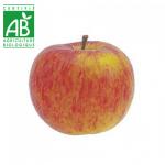 Pomme Bio Boskoop alsacienne