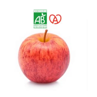 Pomme Gala bio alsacienne