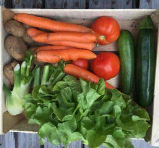 panier Bio fruits et légumes