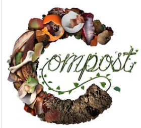 Image du compost de Proxieat