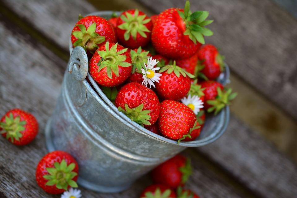 top fruit moins caloriques