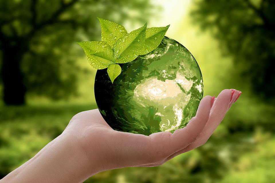 La planète terre  recouvert de vert  et l'eau dans une main féminine