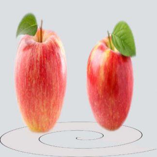 Pomme Bio d'Alsace Zari