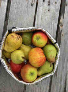 Fruits Bio d'Alsace Pommes et Poires