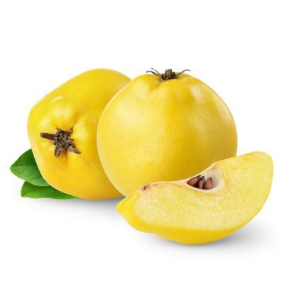 Image de fruits Coing