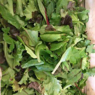Image d'illustration de la salade Mesquin