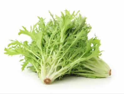 Image de la salade frisé