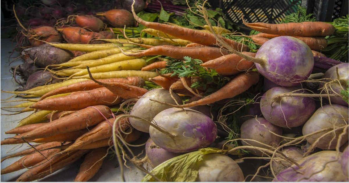 Fruits et légumes Bio d'Alsace légumes-racines