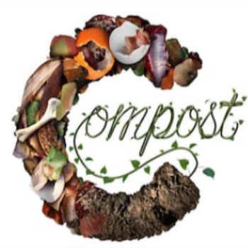 Compost gratuit à Strasbourg