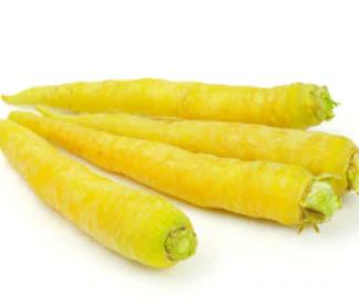 Carotte jaune Bio