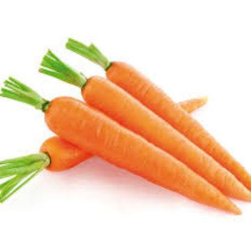 Carotte orange BIO