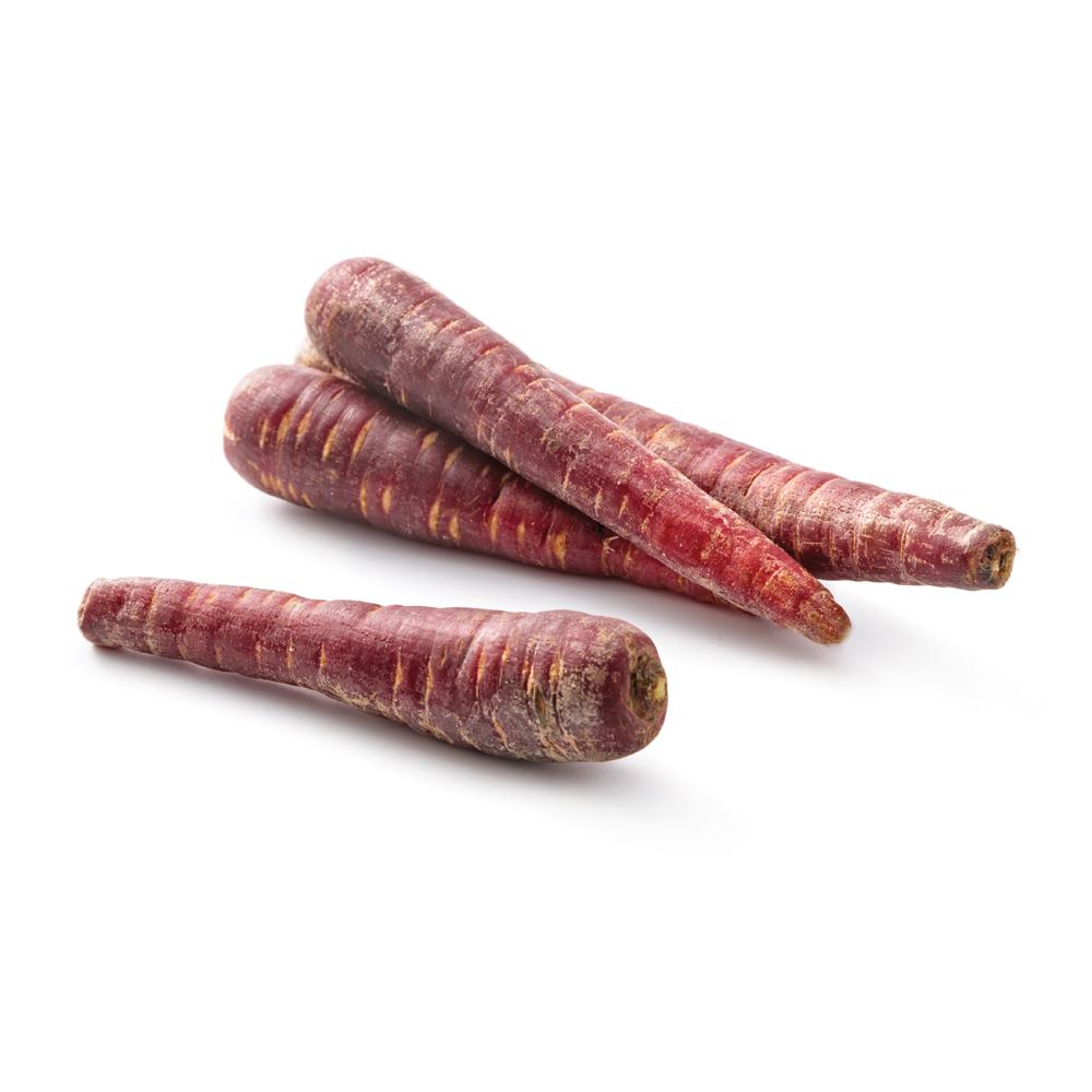 carotte-violette