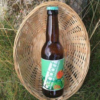 Biere d'Alsace BIO Bendorf